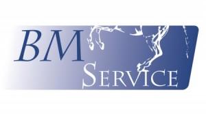 logo_bmservice