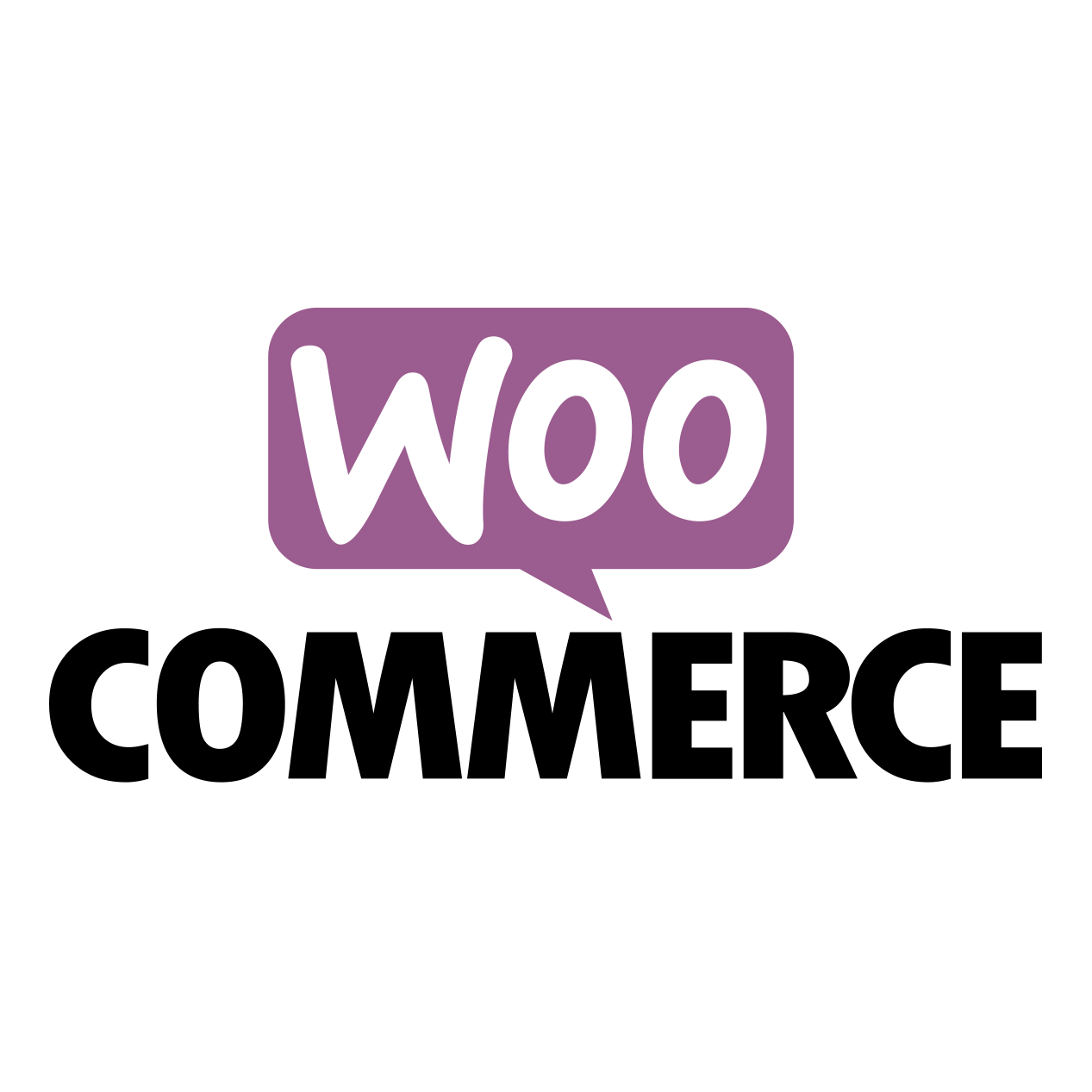 WooCommerce Wordpress ontwikkelen developer design seo seo-optimalisatie optimalisatie
