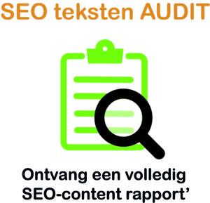 seo teksten audit uitvoeren ?