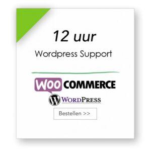 12 uur technische support WordPress