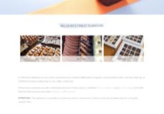 B2B webshop Woocommerce groothandel homepage